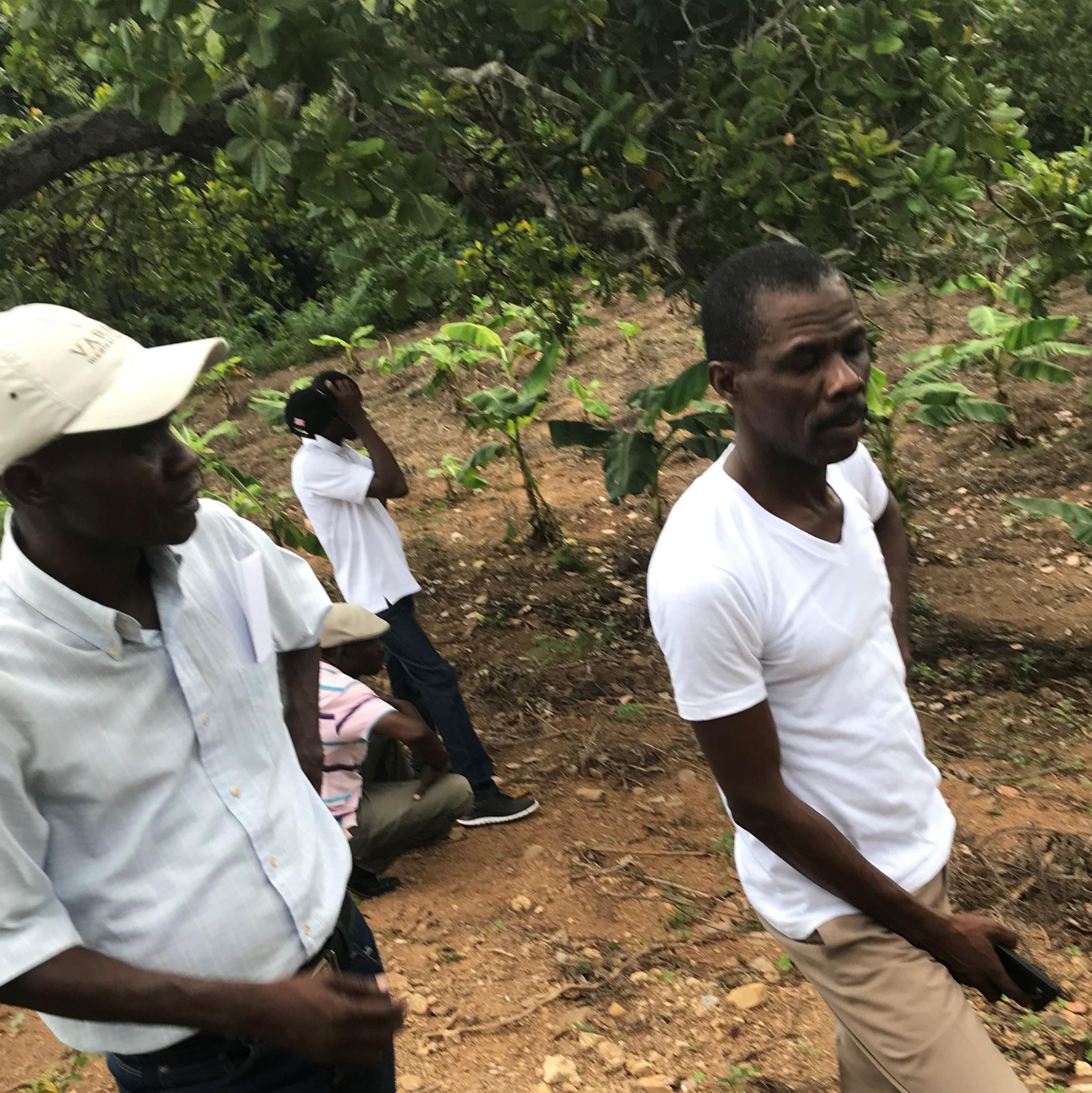 OPODNE Models A Cooperative Economy For Haiti
